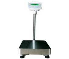 GFK-M Floor Check Weighing Scales (EC Approved)