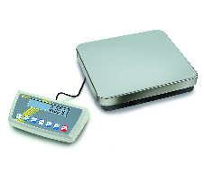 DS Series Precision Bench Scales