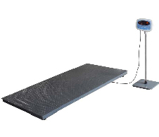 Salter Brecknell PS3000 Floor Scale